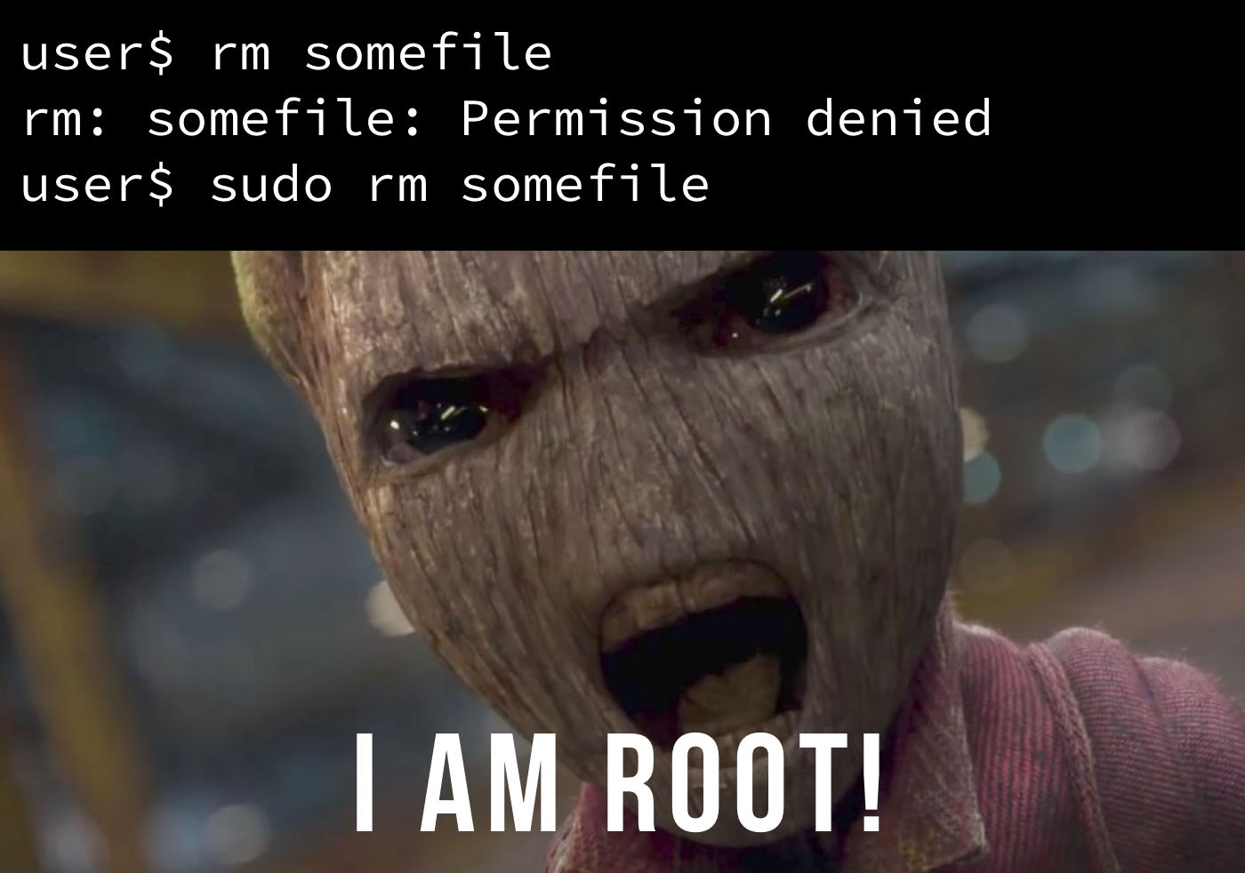 Redirect root's email